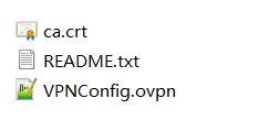 实验测试群晖DSM的PPTP和OpenVPN两种VPN接入 NAS 第15张