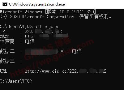 用一条命令行快速查公网IP